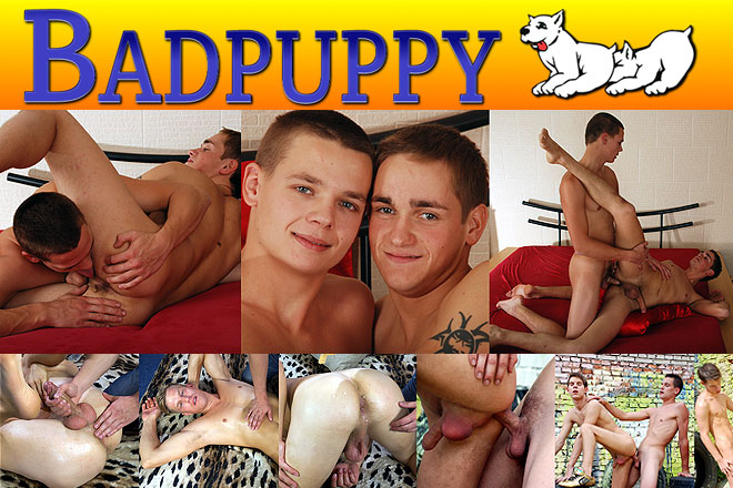 Click Here to Visit Bad Puppy!