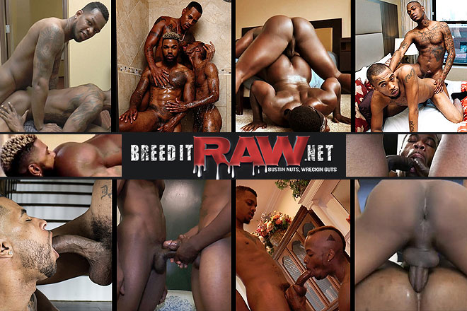 Click Here to Visit Breed It Raw!