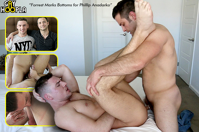 Click Here to Visit Gay Hoopla!