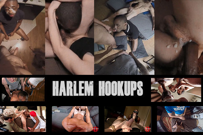 Click Here to Harlem Hookups
